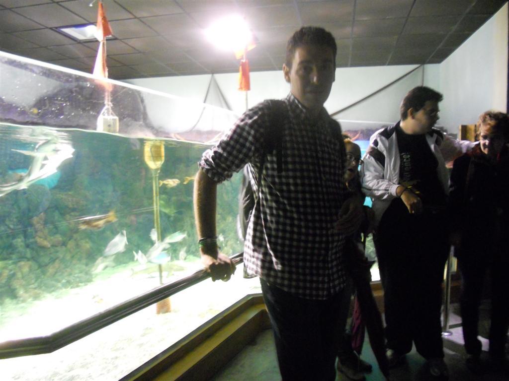 acuario_10 (Large)