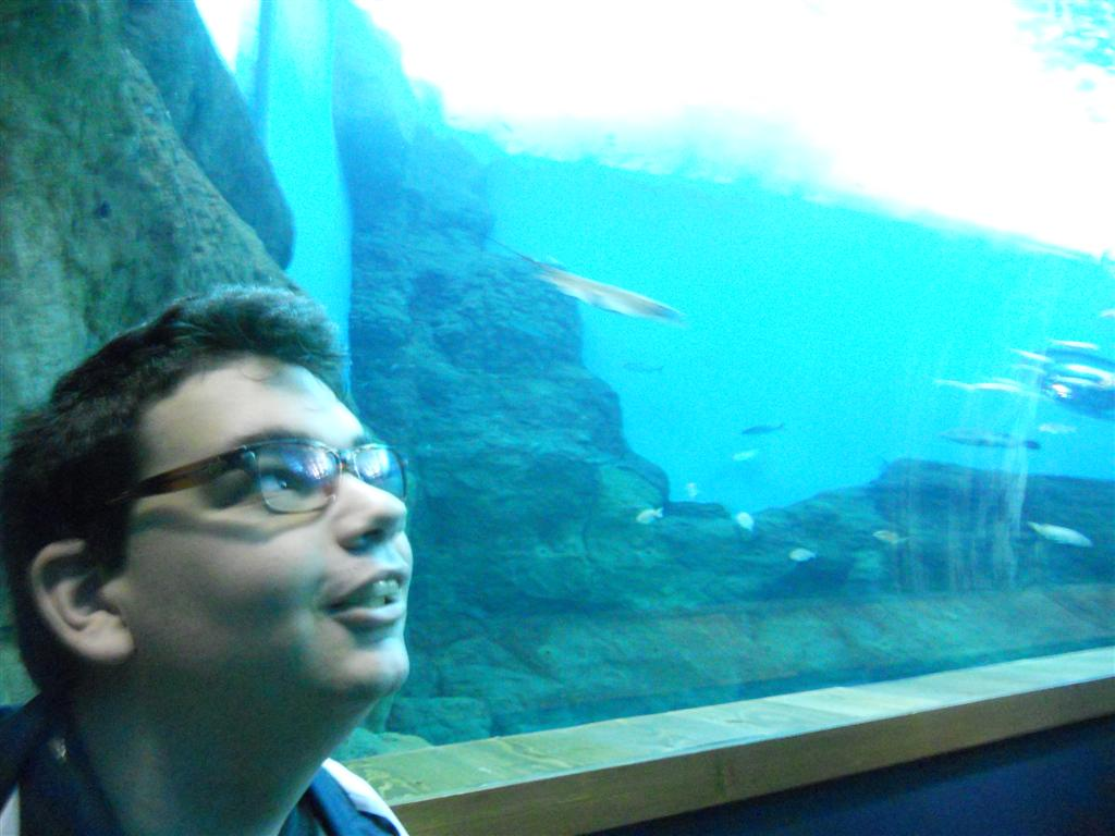 acuario_14 (Large)