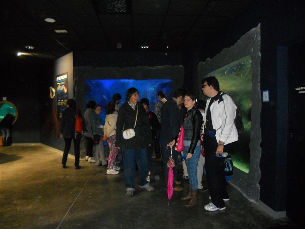 acuario_4 (Large)